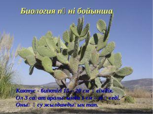 Биология пәні бойынша Кактус - биіктігі 15 – 20 см өсімдік. Ол 3 сағат аралығ
