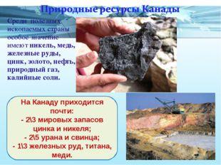 Среди полезных ископаемых страны особое значение имеют никель, медь, железные