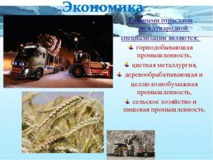 Главными отраслями международной специализации являются: горнодобывающая пром