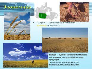 Прерии— крупнейший поставщик пшеницы и зерновых Канада— один из важнейших м