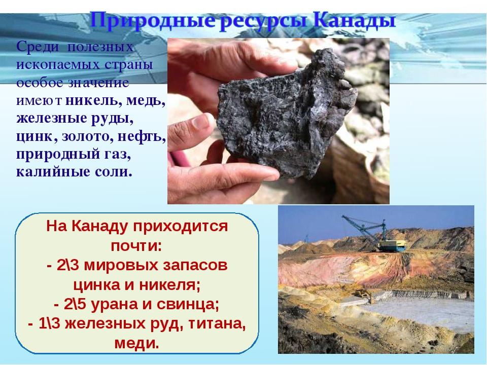Среди полезных ископаемых страны особое значение имеют никель, медь, железные...