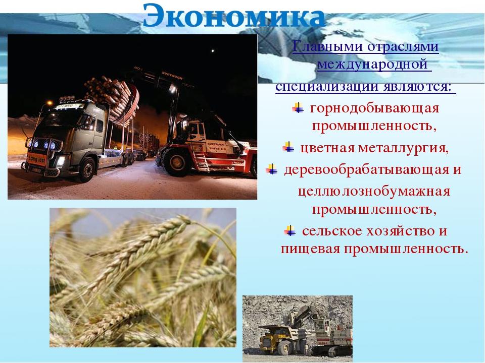 Главными отраслями международной специализации являются: горнодобывающая пром...