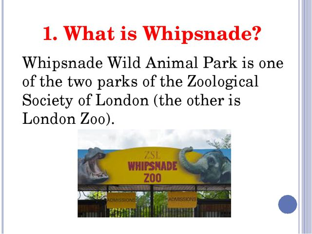 1. What is Whipsnade? Whipsnade Wild Animal Park is one of the two parks of t...