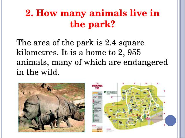 2. How many animals live in the park? The area of the park is 2.4 square kilo...