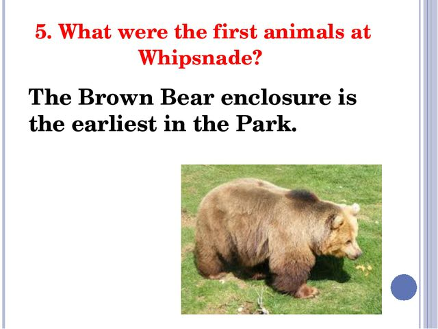 5. What were the first animals at Whipsnade? The Brown Bear enclosure is the...