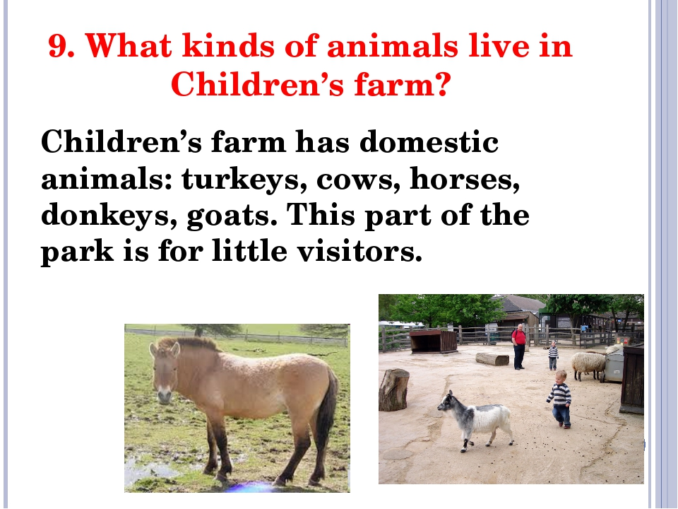 9. What kinds of animals live in Children's farm? Children's farm has domesti...