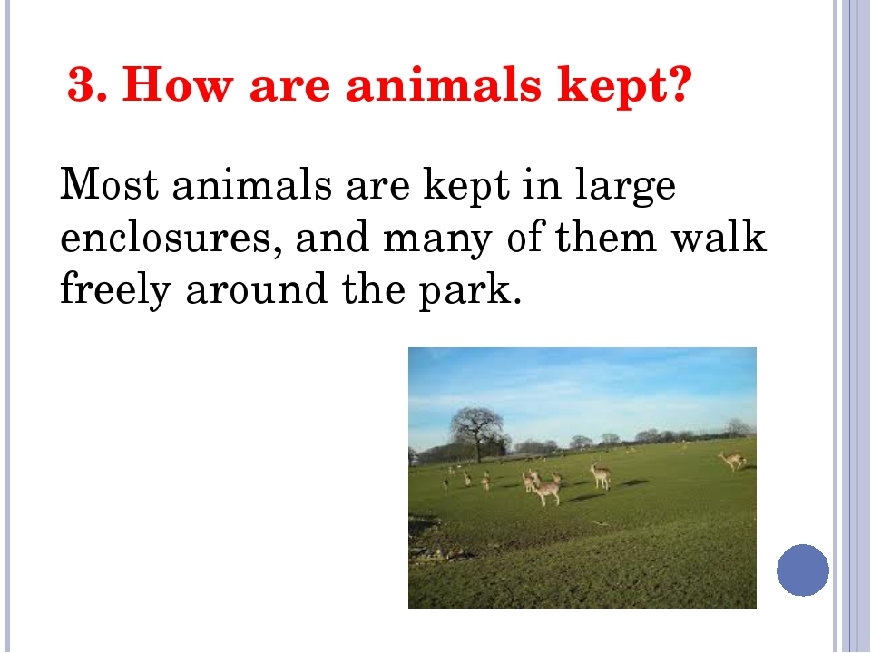 3. How are animals kept? Most animals are kept in large enclosures, and many...