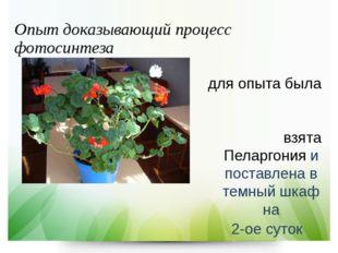 Опыт доказывающий процесс фотосинтеза для опыта была взята Пеларгония и поста