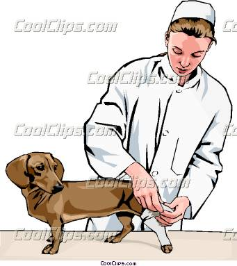 C:\Users\пользователь\Downloads\vet_bandaging_dog's_leg_CoolClips_peop2413.jpg