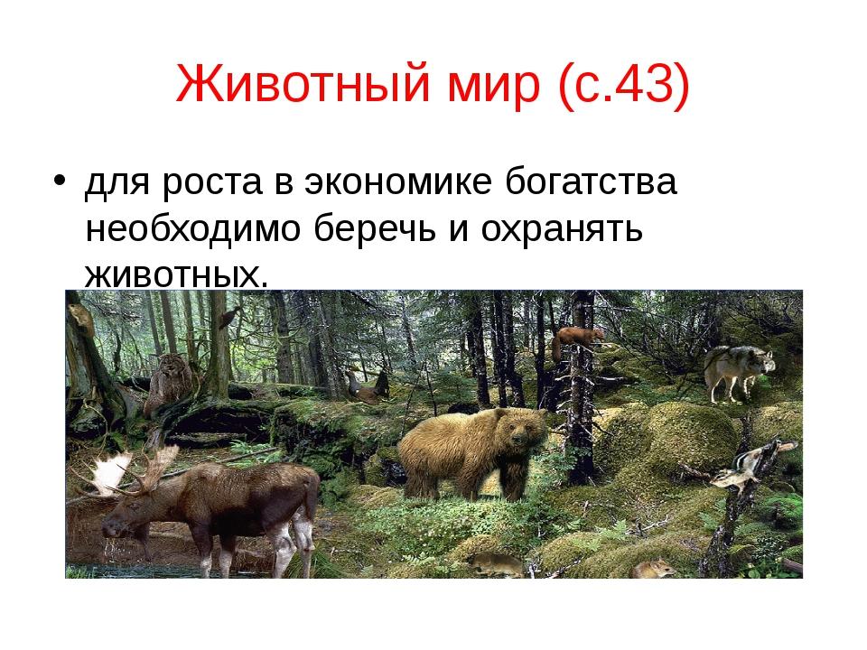 Животный мир (с.43) для роста в экономике богатства необходимо беречь и охран...