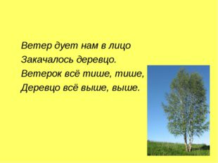 Ветер дует нам в лицо Закачалось деревцо. Ветерок всё тише, тише, Деревцо вс