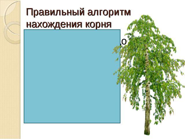 Правильный алгоритм нахождения корня Составить гнездо из однокоренных слов; 2...
