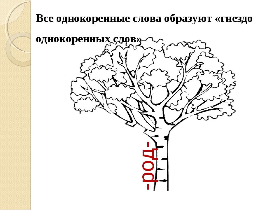 -род- Все однокоренные слова образуют «гнездо однокоренных слов»