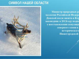 СИМВОЛ НАШЕЙ ОБЛАСТИ Министр природных ресурсов и экологии Российской Федера