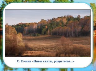 С. Есенин «Нивы сжаты, рощи голы…»