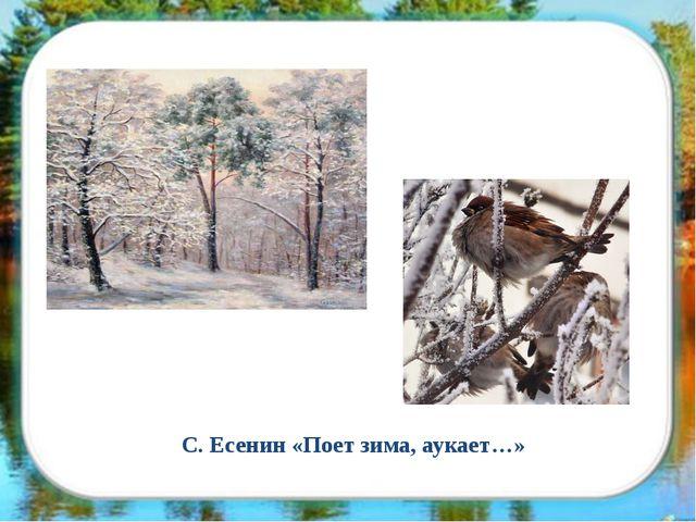 С. Есенин «Поет зима, аукает…»