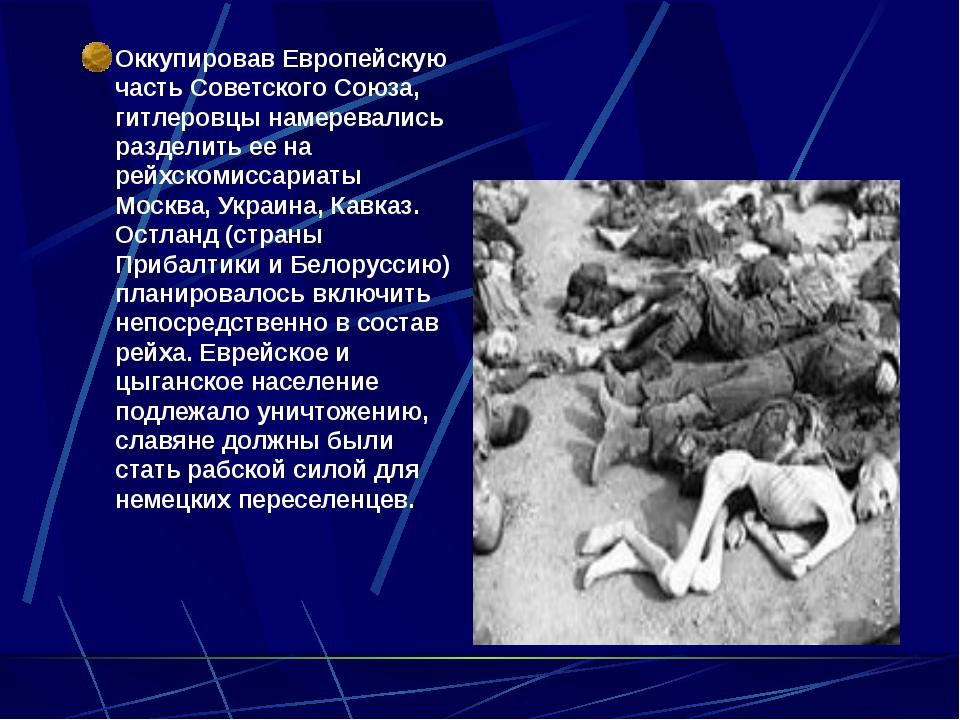Оккупировав Европейскую часть Советского Союза, гитлеровцы намеревались разд...