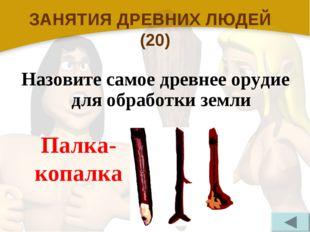 ЗАНЯТИЯ ДРЕВНИХ ЛЮДЕЙ (20) Назовите самое древнее орудие для обработки земли