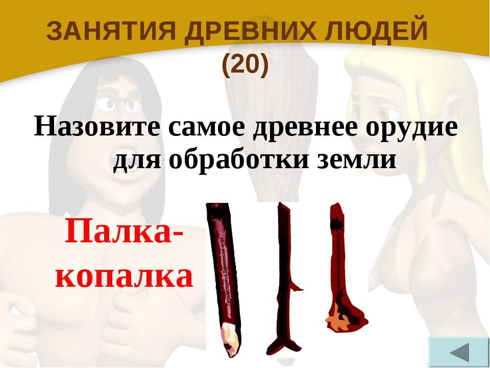 ЗАНЯТИЯ ДРЕВНИХ ЛЮДЕЙ (20) Назовите самое древнее орудие для обработки земли...