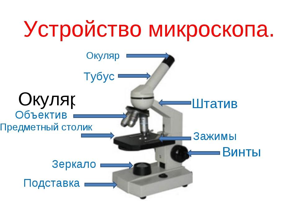 Со знаком бесконечности окуляр микроскопа