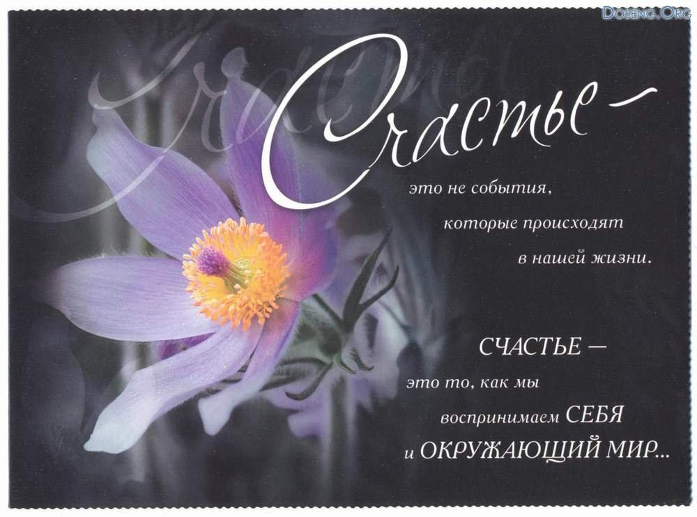 http://www.proza.ru/pics/2015/02/21/2284.jpg