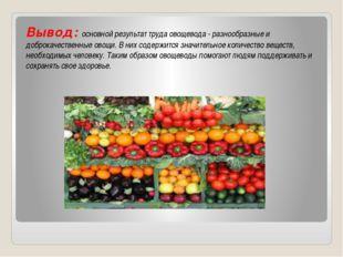 Вывод: основной результат труда овощевода - разнообразные и доброкачественны