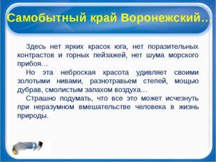 Самобытный край Воронежский… Здесь нет ярких красок юга, нет поразительных ко