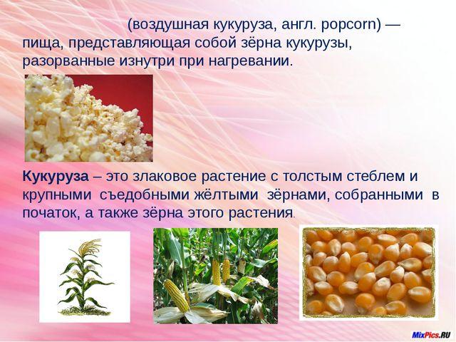 Попко́рн (воздушная кукуруза, англ. popcorn) — пища, представляющая собой зё...