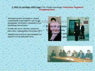 С 2001 по октябрь 2004 года СПК «Труд» руководит Никулина Людмила Владимиров
