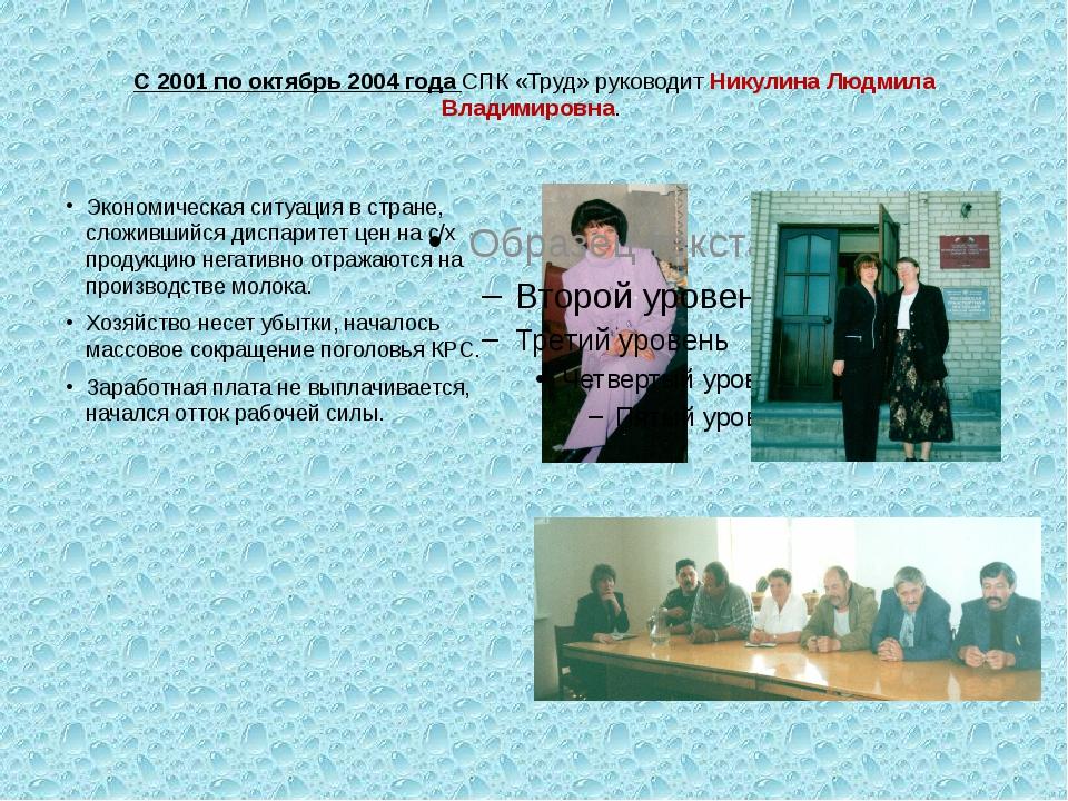 С 2001 по октябрь 2004 года СПК «Труд» руководит Никулина Людмила Владимиров...