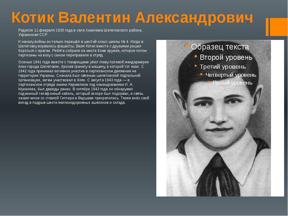 Котик Валентин Александрович Родился 11 февраля 1930 года в селе Хмелевка Шеп...
