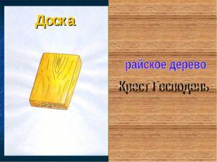 Доска Жагрова Светлана Николаевна, МОУ СОШ №2 п. Екатериновка Саратовской обл
