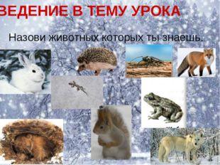 ВВЕДЕНИЕ В ТЕМУ УРОКА Назови животных которых ты знаешь.