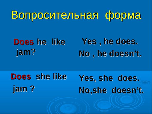 Вопросительная форма Does he like jam? Does she like jam ? Yes , he does. No...