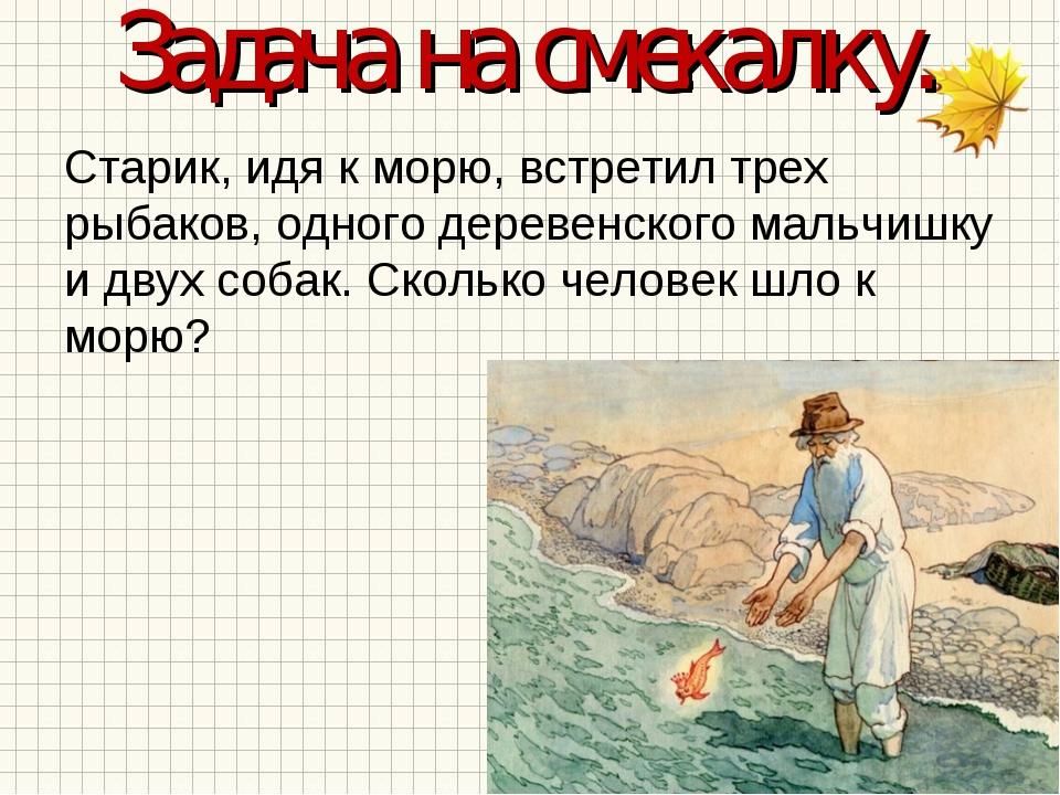 Задача на смекалку. Старик, идя к морю, встретил трех рыбаков, одного деревен...