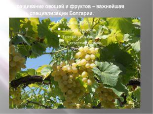 Выращивание овощей и фруктов – важнейшая отрасль специализации Болгарии.
