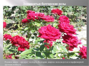 Знаменитые болгарские розы Розовое масло – продукт экспорта Болгарии, широко