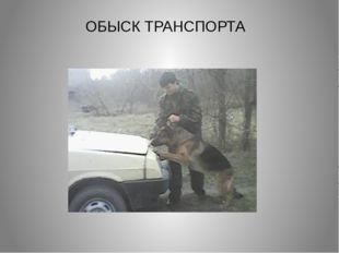 ОБЫСК ТРАНСПОРТА