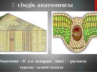 Өсімдік анатомиясы Анатомия – бұл ағзалардың ішкі құрылысы туралы ғылым саласы