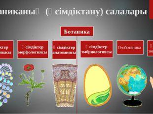 Ботаниканың (өсімдіктану) салалары