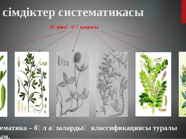 Бұршақ тұқымдасы Өсімдіктер систематикасы Систематика – бұл ағзалардың класси...