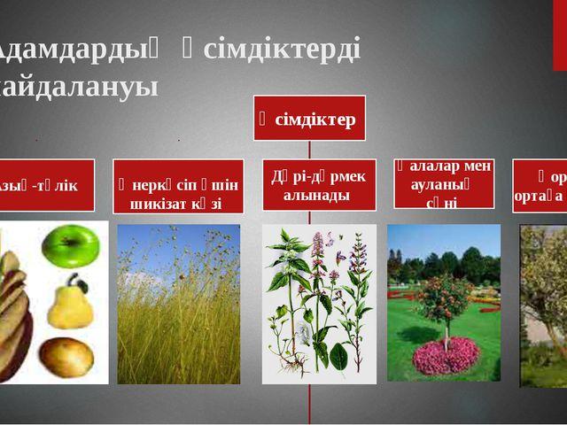 Адамдардың өсімдіктерді пайдалануы