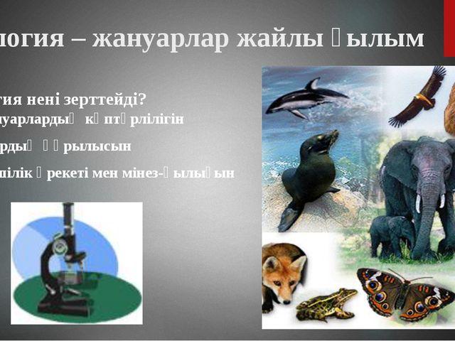Зоология – жануарлар жайлы ғылым Зоология нені зерттейді? Жануарлардың көптүр...