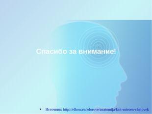 Спасибо за внимание! Источник: http://elhow.ru/zdorove/anatomija/kak-ustroen-