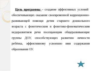 Формы и режим организации образовательной деятельности на логопедическом пунк