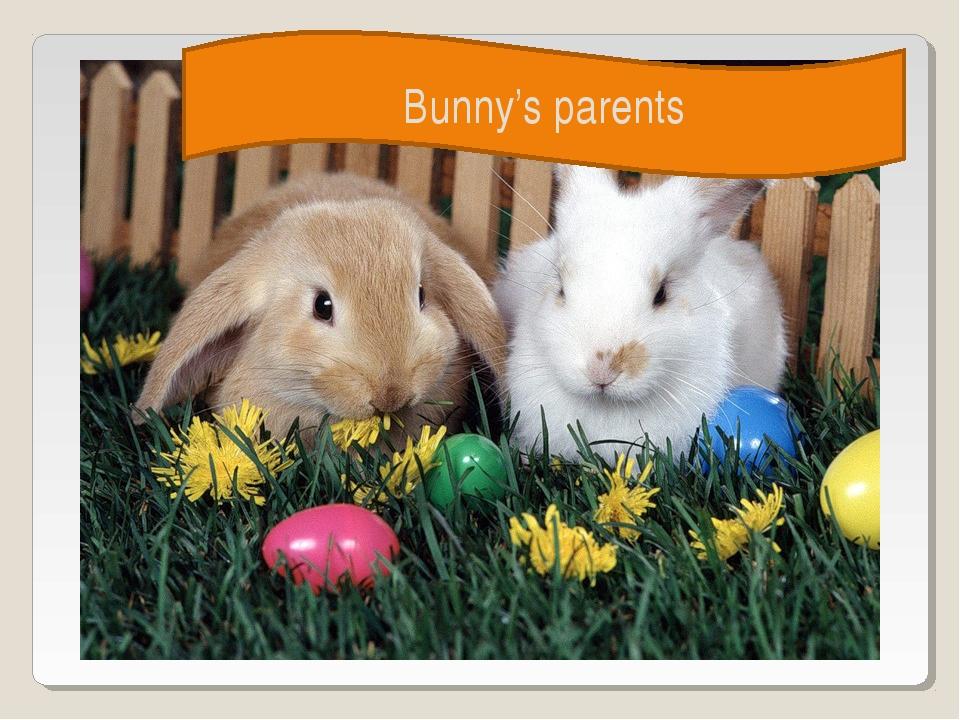 Bunny's parents