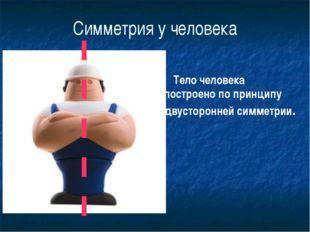 Симметрия у человека Тело человека построено по принципу двусторонней симметр