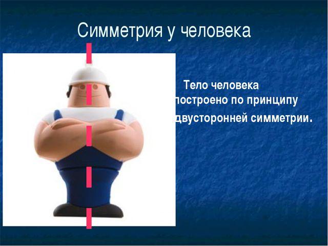 Симметрия у человека Тело человека построено по принципу двусторонней симметр...