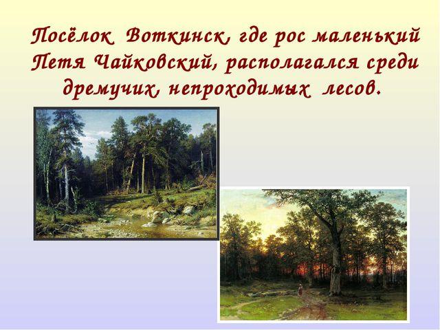 Посёлок Воткинск, где рос маленький Петя Чайковский, располагался среди дрему...