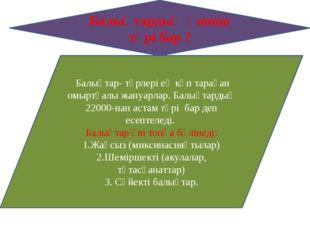 Балықтардың қанша түрі бар ? Балықтар- түрлері ең көп тараған омыртқалы жану